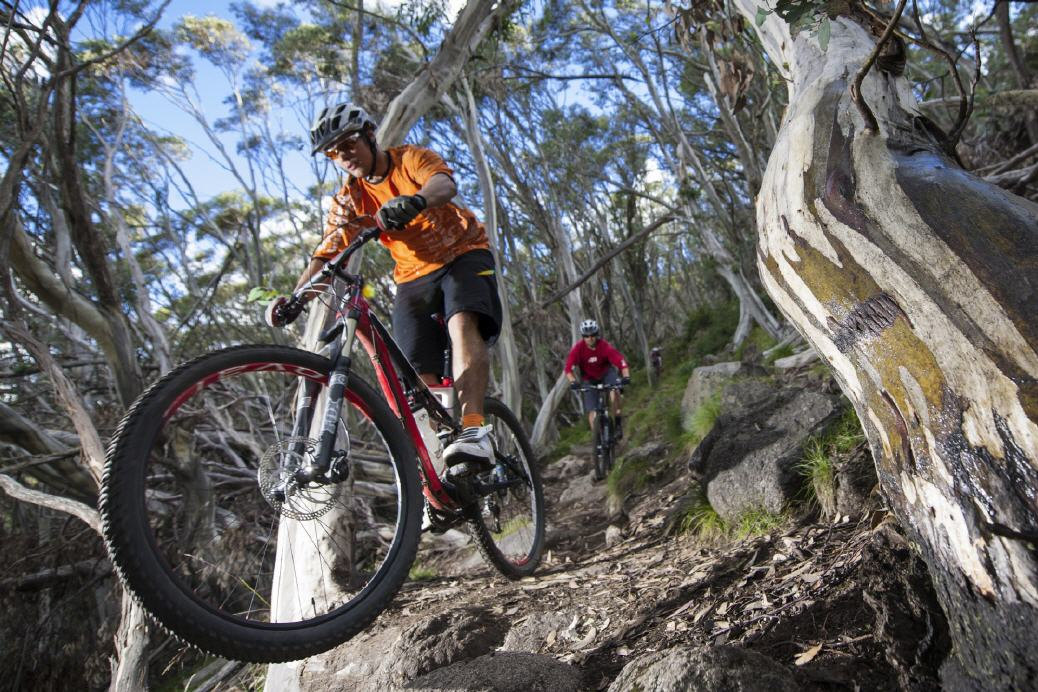 Mountainbiking am Mt. Buller