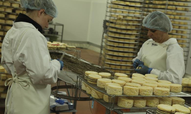 Käse-Produktion in der Normandie