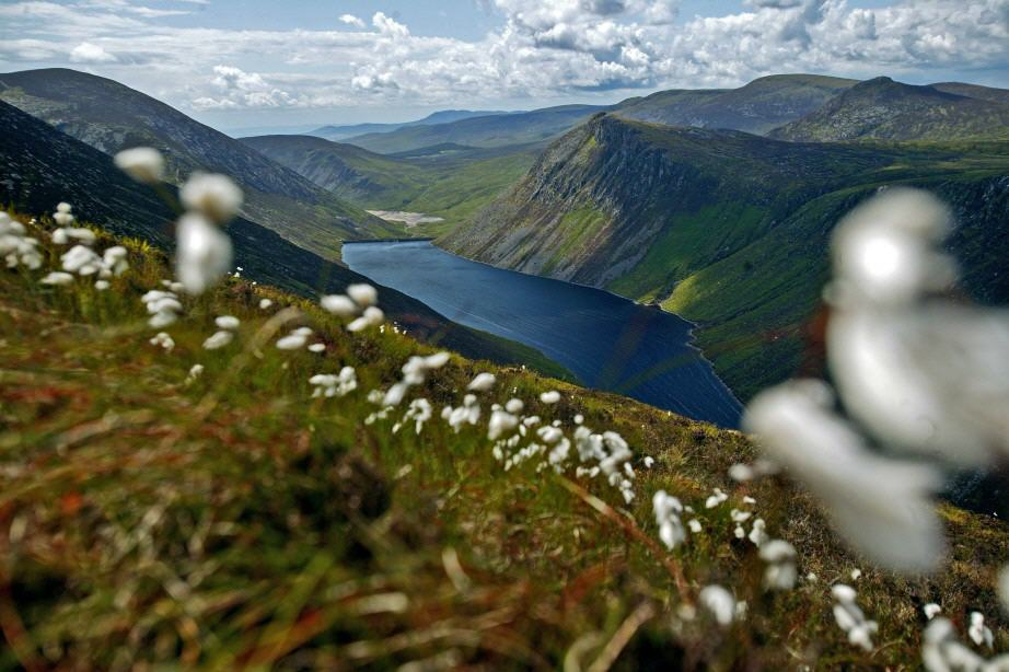 Nordirland: Talblick in die Mourne Mountains