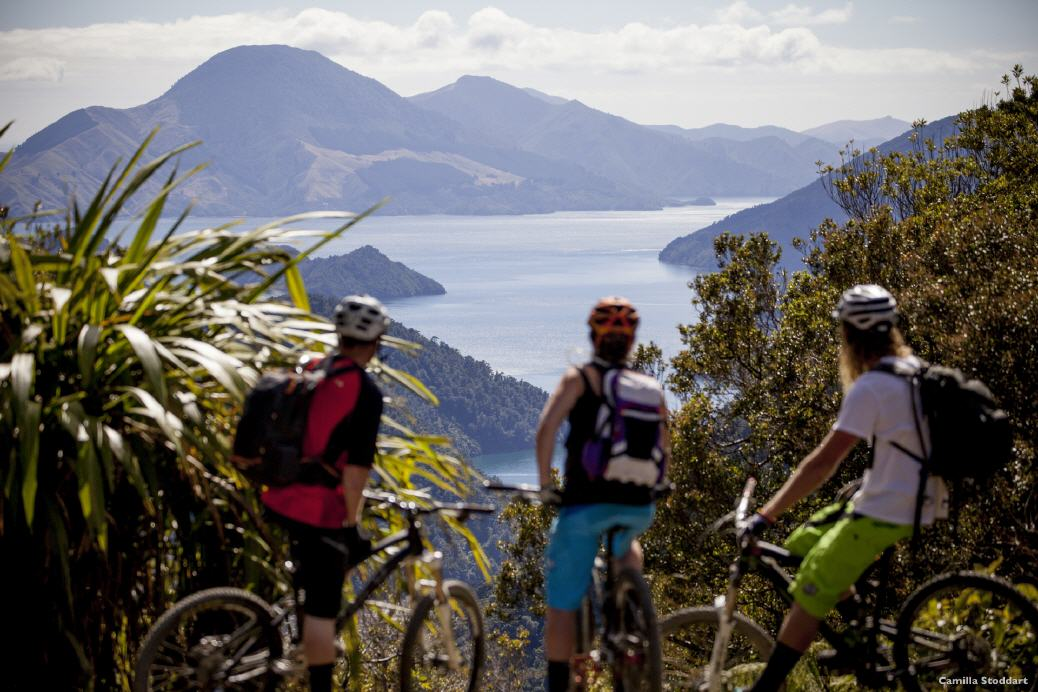 Neuseeland: Mountainbiking in Marlborough