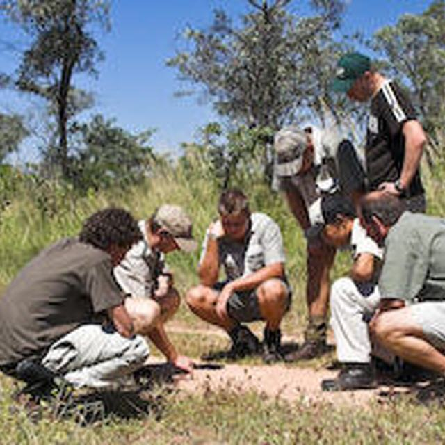 Leoparden-Safaris in Sri Lanka