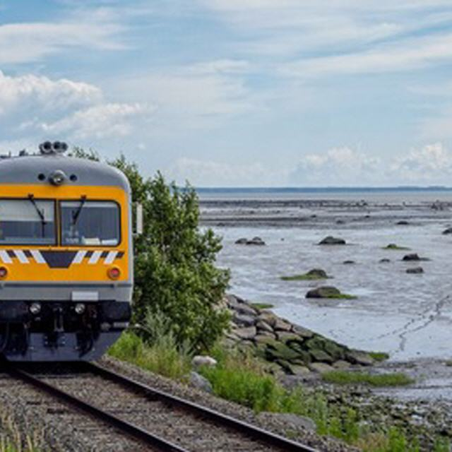 USA: Mardi Gras! - Karneval in New Orleans